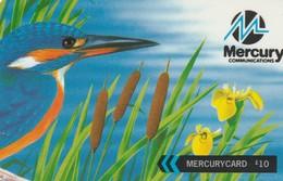 TARJETA TELEFONICA DE GRAN BRETAÑA, British Wildlife. Kingfisher (We Charge By The Penny) 48MERT. MER436D. (007) - Reino Unido