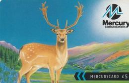 TARJETA TELEFONICA DE GRAN BRETAÑA, British Wildlife. Fallow Deer (For Better Communication) 41MERB. MER568B. (004) - Reino Unido