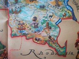 """Carte Congo Belge Ethnographique +  Livre """"Faunaflor Congo"""" Complété Vieux Papiers Colonie Belgique - Cartes"""