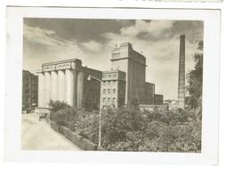 Usine ANCO Macaroni - NV Antoine Coppens SA - Turnhout - 1956 - 2 Scans - Turnhout
