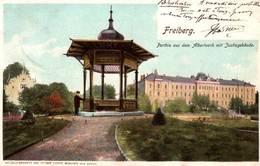 CPA - FREIBERG.i.Sachsen - Vue De La Ville - Albertpark - Freiberg (Sachsen)