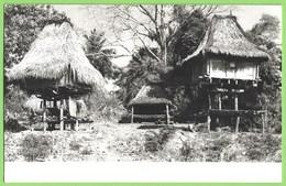 Dili - Casas Típicas - Timor - Postcards