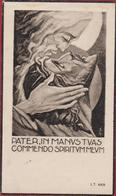 Petrus Piessens Windey Illustrator Jos Speybrouck Belsele Kemzeke Waasland 1949 Doodsprentje Bidprentje Image Mortuaire - Images Religieuses