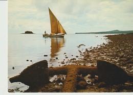 C.P. - PHOTO - DZAOUDZI - LA COTE A MARÉE BASSE - 77 - OPTICAM - - Comoros