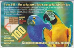 #08 - RUSSIA - ST. PETERSBURG-46 - PARROTT - BIRD - Russland