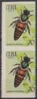 1971.123 CUBA. 1971. Ed.1974. S/ GOMA. 30c APICULTURA, ABEJA REINA, BEE. - Kuba