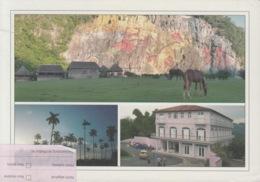 2012-EP-25 CUBA 2011 POSTAL STATIONERY FORWARDED. PINAR DEL RIO 4/8, VIÑALES, MURAL PREHISTORIA. - Kuba