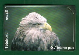 NORWAY  - BIRD - Oiseaux