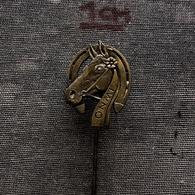 Badge Pin ZN008294 - Equestrianism (Horseback Riding) Poland Iwno (Weidensee) - Pin's