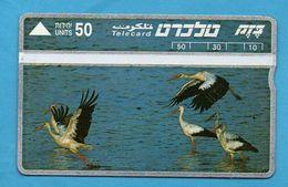 ISRAEL - BIRD - MINT - Oiseaux