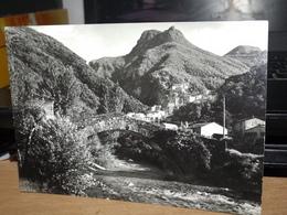 CARTOLINA MONZONE ALTO CON PONTE S.LUCIA FORMATO GRANDE - Italie