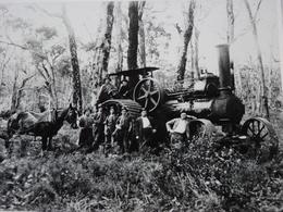 Rare!  Belle Grande Photo Ancienne Australie Australia Tractor Tracteur Métier - Lieux
