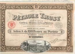 Action Ancienne - Pétrole Trust - Société Anonyme - Titre De 1924 - N°192870 - Pétrole