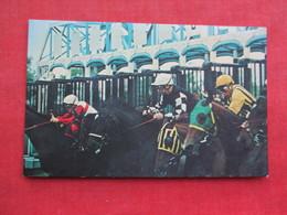 "Aqueduct  The  ""Big A""  Racetrack   Long Island>- Ref 3288 - Long Island"