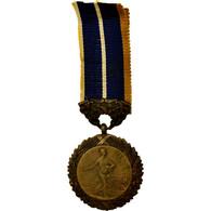 France, Ministère De L'Hygiène, Prévoyance Sociale, Médaille, Très Bon - Militaria