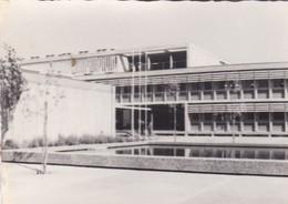 TECMAN HAIFA-CIRCA 1960s-PHOTO ORIGINAL TBE-SIZE 10x7cm - BLEUP - Luoghi