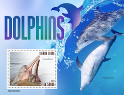 SIERRA LEONE 2019 - Dolphins S/S. Official Issue. - Dolfijnen