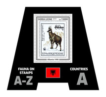 SIERRA LEONE 2019 - Fauna, Albania. Official Issue. - Postzegels Op Postzegels