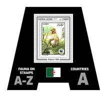 SIERRA LEONE 2019 - Fauna, Algeria: Monkey. Official Issue. - Postzegels Op Postzegels