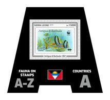 SIERRA LEONE 2019 - Fauna, Antigua: Fishes. Official Issue. - Postzegels Op Postzegels