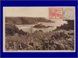 Grande Bretagne - Occupation Allemande Jersey, Carte Maximum, Yvert 4, Anse Du Portelet - Maximum Cards