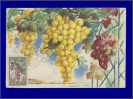 Algérie, Carte Maximum, Fruits : Raisins - Maximumkaarten