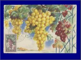 Algérie, Carte Maximum, Fruits : Raisins - Cartes-maximum
