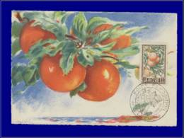 Algérie, Carte Maximum, Fruits : Orange - Cartes-maximum