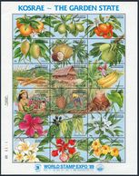 Micronesia 103 Ar Sheet Of 18, MNH, $9.00. Michel 154-171 Bl.6. EXPO-1989, Kosrae - The Garden State: Fruits, Flowers. - Fruits