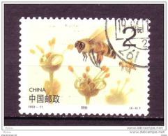 Chine, China, Abeille, Bee, Fleur, Flower - Abeilles