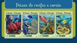 Sao Tome 2016  Fauna  Corals And Reef Fishes - Sao Tome And Principe