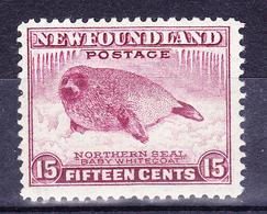 CANADA NEW FOUNDLAND 1941-1944 NORTHERN SEAL BABY WHITECOAT MH SC# 262 - 1908-1947
