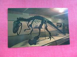 Al The Allosaurus  Utah      Dinosaur   Ref 3290 - Animals