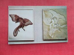 Archeopteryx     Dinosaur   Ref 3290 - Animals
