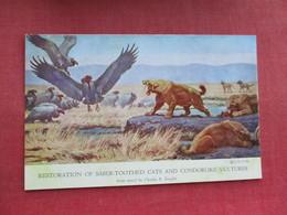 Restoration Of Saber Toothed Cats & Condorlike Vultures  Dinosaur   Ref 3290 - Animals