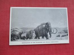 Restoration Of The Mammoth & Woolly Rhonoceros    Dinosaur   Ref 3290 - Animals