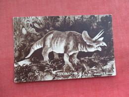 Triceratops   Dinosaur   Ref 3290 - Animals