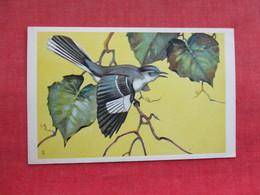 Mockingbird      Ref 3290 - Birds