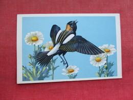Bobolink    Ref 3290 - Birds