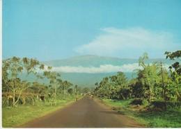 C.P. - PHOTO - CAMEROUN - VUE DU MONT CAMEROUN - BUEA - PROVINCE DU SUD OUEST - PRESBOOK - VICTORIA - Cameroun
