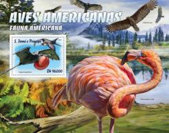 Sao Tome 2016  Fauna   American  Birds , Magnificent Frigatebird - Sao Tome And Principe