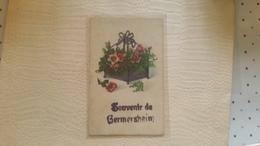 B7/FANTAISIE- Souvenir De GERMERSHEIM - Autres
