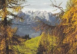 Austria Land Salzburg Postcard Unused Good Condition - Austria