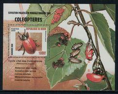 Bénin 2000 // Insectes, Coléoptères, Bloc-feuillet Neuf** MNH - Insectes