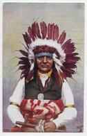 """Chief """"White Swan"""" - Tuck Oilette 3495 - America"""