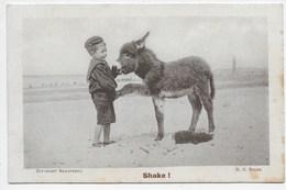 Small Boy With Donkey Foal - Shake! - Donkeys