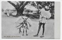 The Dhobie With His Donkey - Donkeys