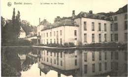 BONLEZ   Le Château Vu Des étangs - Belgique