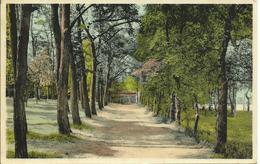 Orroir  Kluisberg Weg Naar De Acacias - Kluisbergen