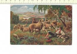 DIEREN 311 - Berger Avec MOUTON - SCHAAPHERDER MET SCHAPEN - Animals